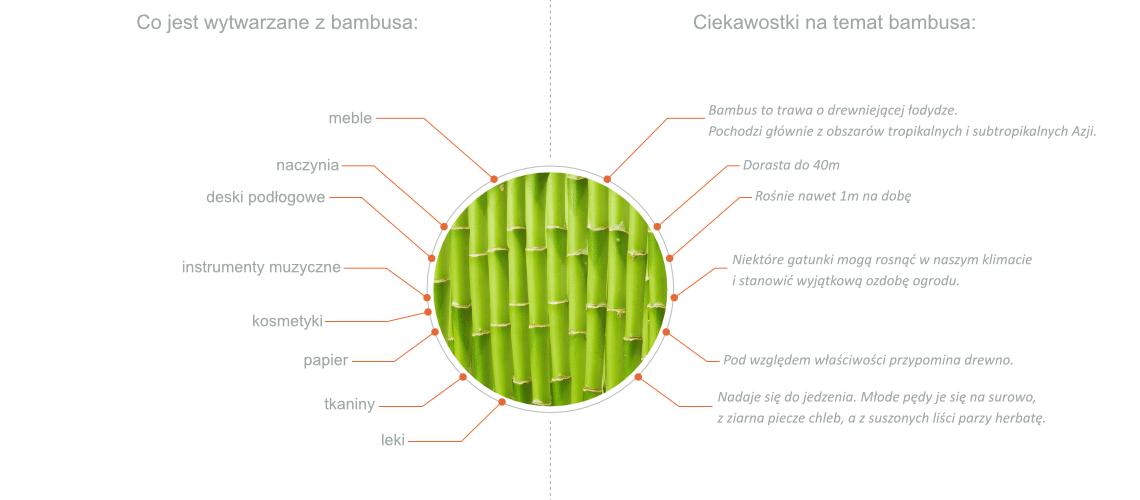 czy bambus to drewno